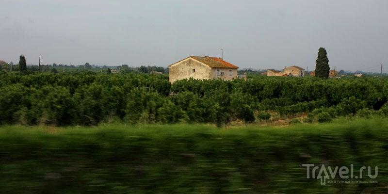 Окрестности Валенсии, Испания / Фото из Испании