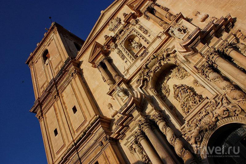 Собор в Эльче, Испания / Фото из Испании