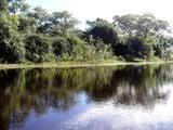 Низкие берега / Бразилия