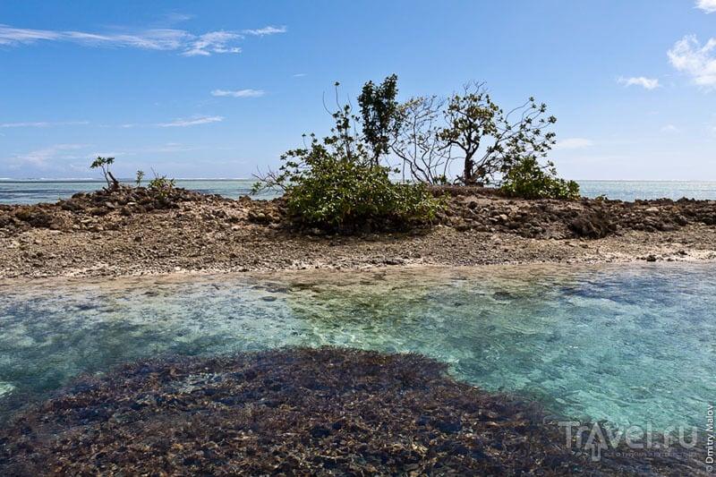 На острове Понпеи, Микронезия / Фото из Микронезии