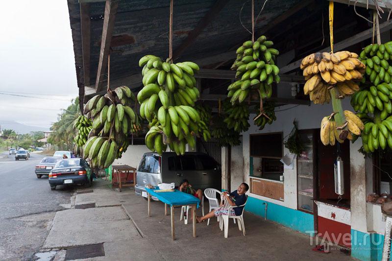Главный рынок Колониа, Микронезия / Фото из Микронезии