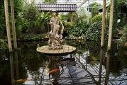 В тайваньском саду / Нидерланды