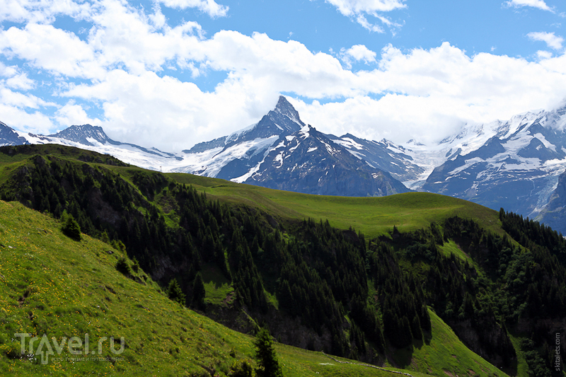 Вид на Шрекхорн / Швейцария