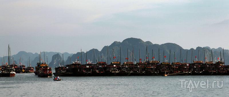 Кораблики ожидают / Вьетнам