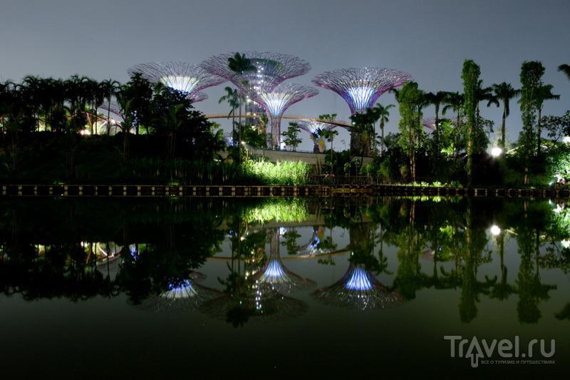 В парке с супер-деревьями / Сингапур