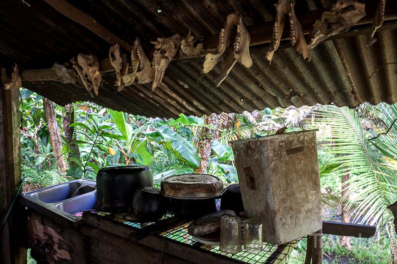 Интерьер традиционной микронезийской кухни на острове Косрае, Микронезия / Фото из Микронезии