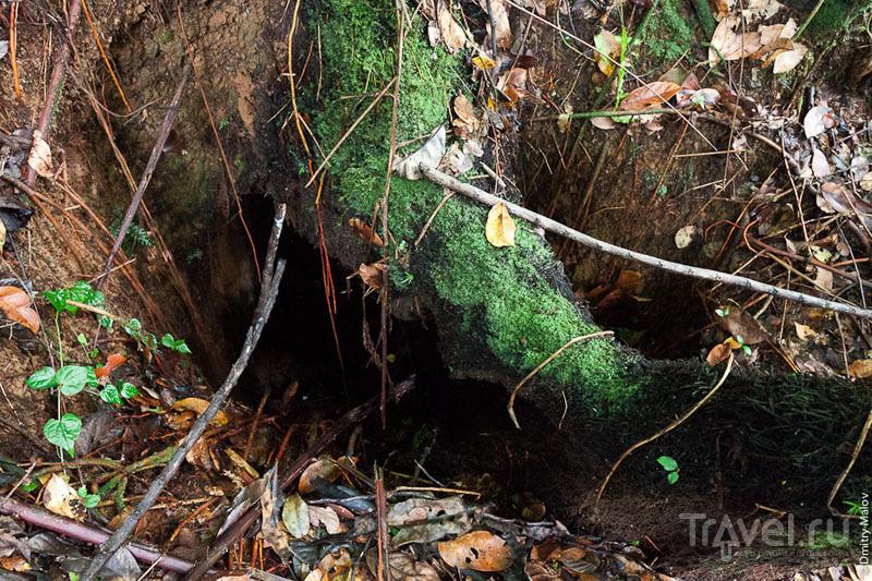 Вход в туннель на острове Косрае, Микронезия / Фото из Микронезии