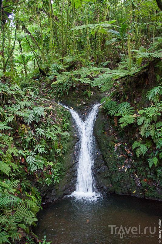 Водопад на острове Косрае, Микронезия / Фото из Микронезии