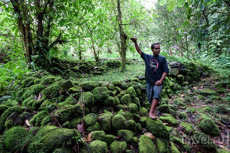 Руины Менке на острове Косрае, Микронезия / Фото из Микронезии