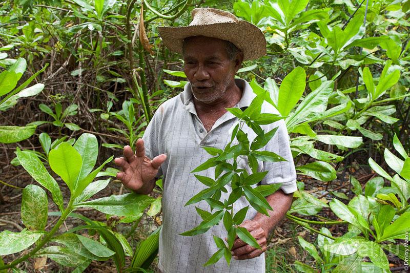 Гид с острова Косрае, Микронезия / Фото из Микронезии