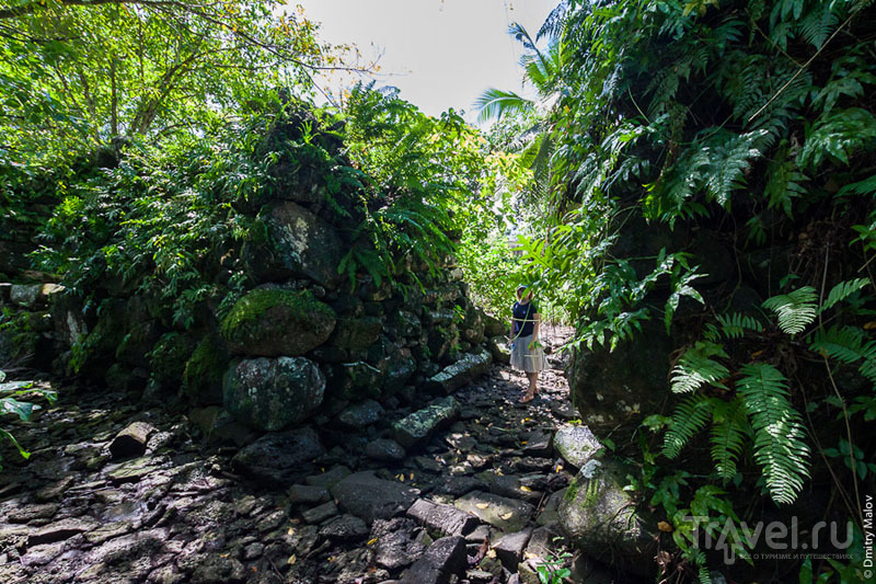 Руины Лелу, Микронезия / Фото из Микронезии