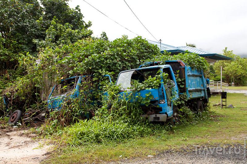На острове Лелу, Микронезия / Фото из Микронезии