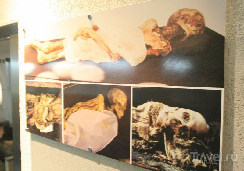 Фотографии мумии / Россия