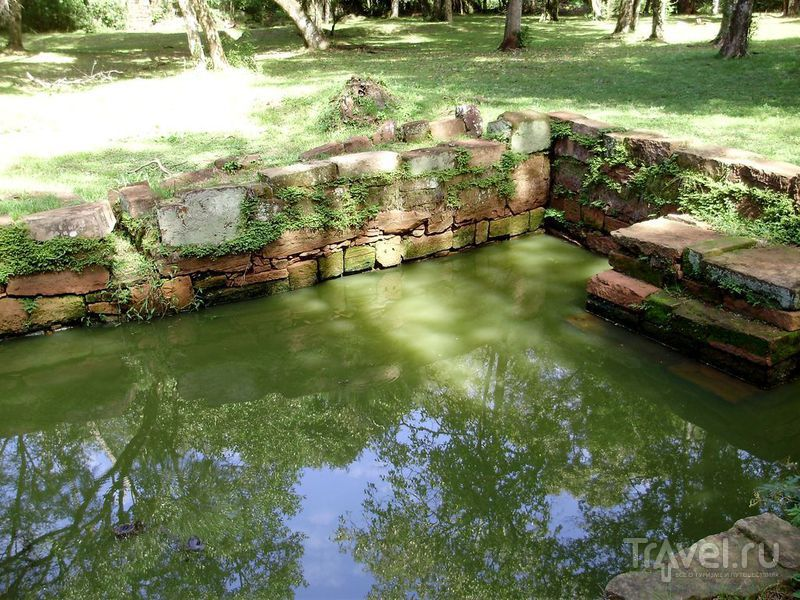 Бассейн в саду / Аргентина
