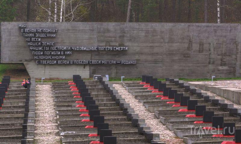 Похоже на военное кладбище / Белоруссия