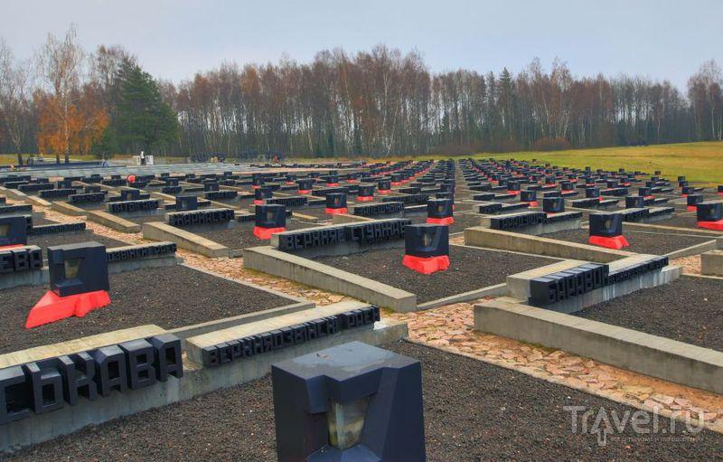 Огоньки - символы пожаров / Белоруссия
