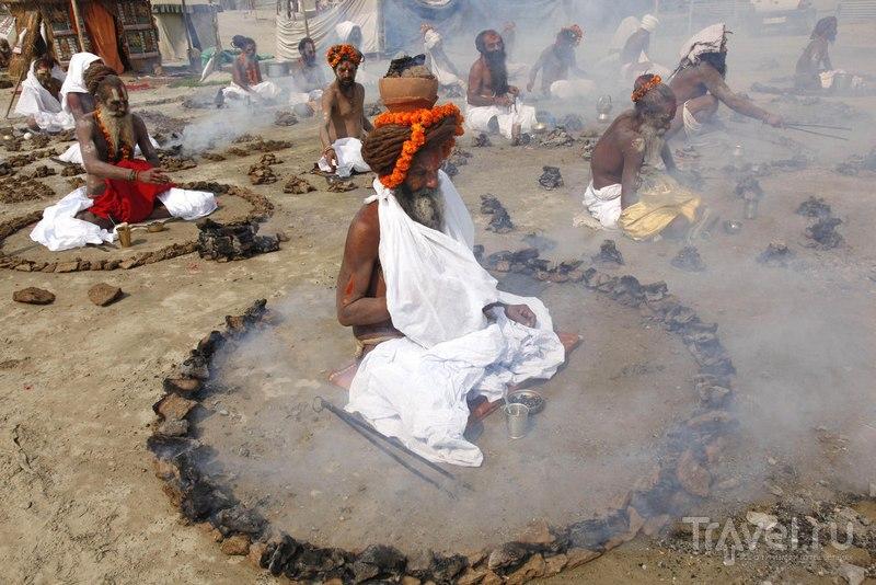Сжигание сухих лепешек коровьего навоза / Индия