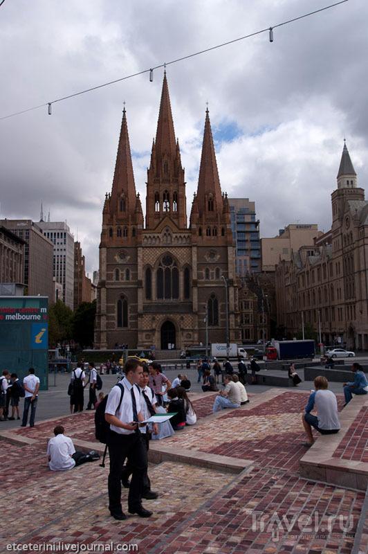 Фасад собора Святого Павла в Мельбурне / Фото из Австралии