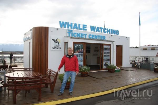 Морской тур в Хусавике  / Исландия