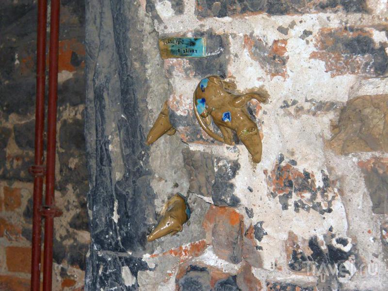 Крысы в стене / Польша