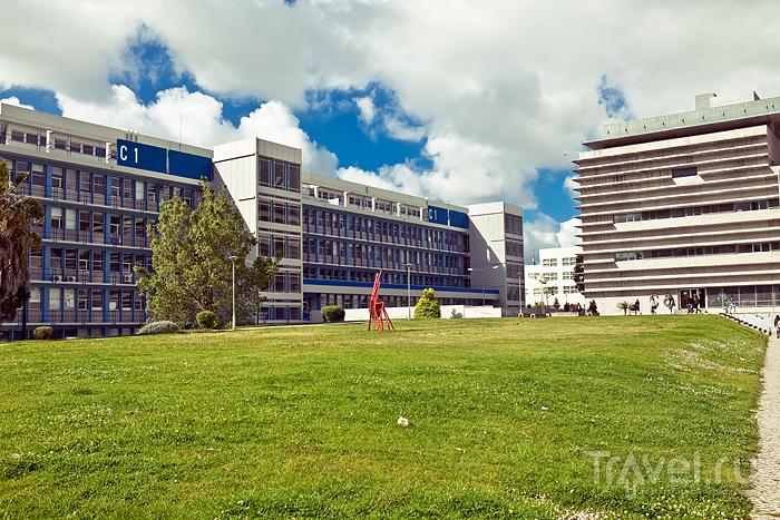 Университетская территория / Португалия