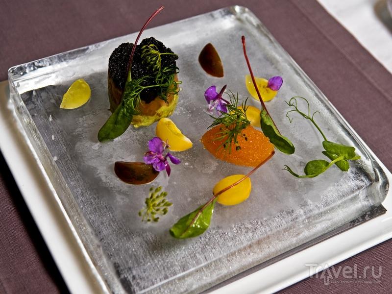 Блюда в ресторане Icehotel подаются на ледяных тарелках, Швеция / Швеция
