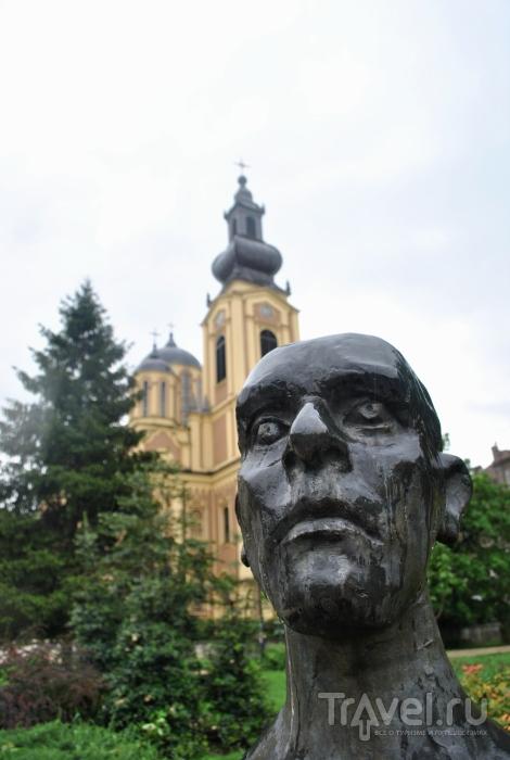 Босния, страна противопехотных мин / Босния и Герцеговина