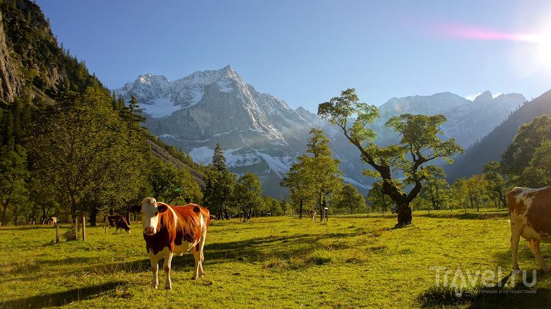 Походы в горы. Карвендел. Австрия / Фото из Австрии