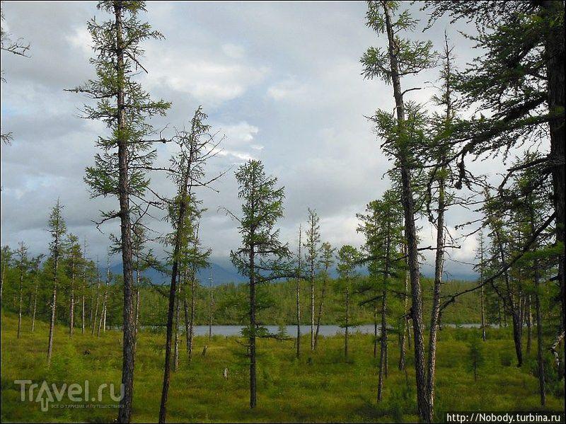 Путешествие вдоль БАМа. Чарское бездорожье / Россия