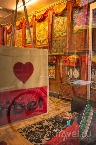 Дели: тибетская деревня Мажну Ка Тила / Индия