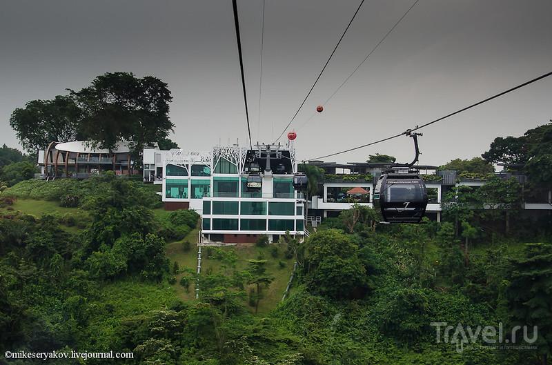 Город, о котором пел Вертинский / Фото из Сингапура