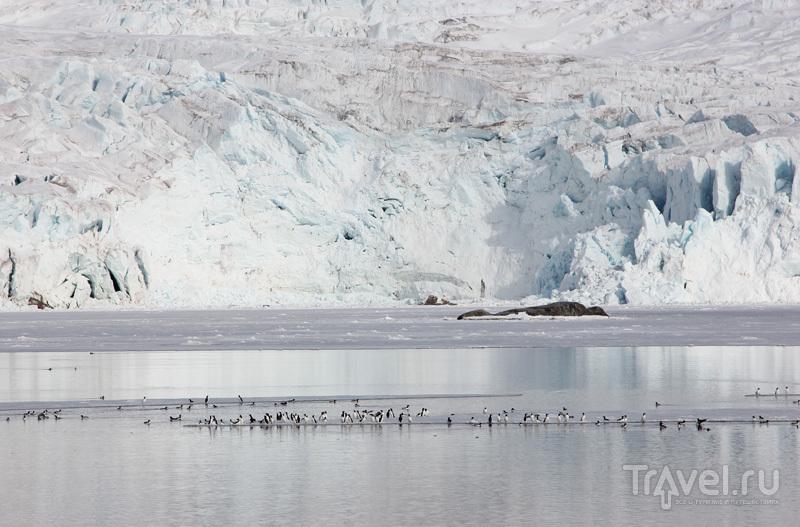 Ледники Шпицбергена / Фото со Шпицбергена