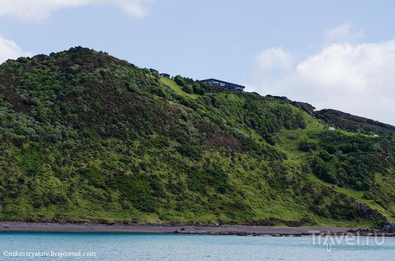 """Новая Зеландия. """"Залив островов"""" / Фото из Новой Зеландии"""