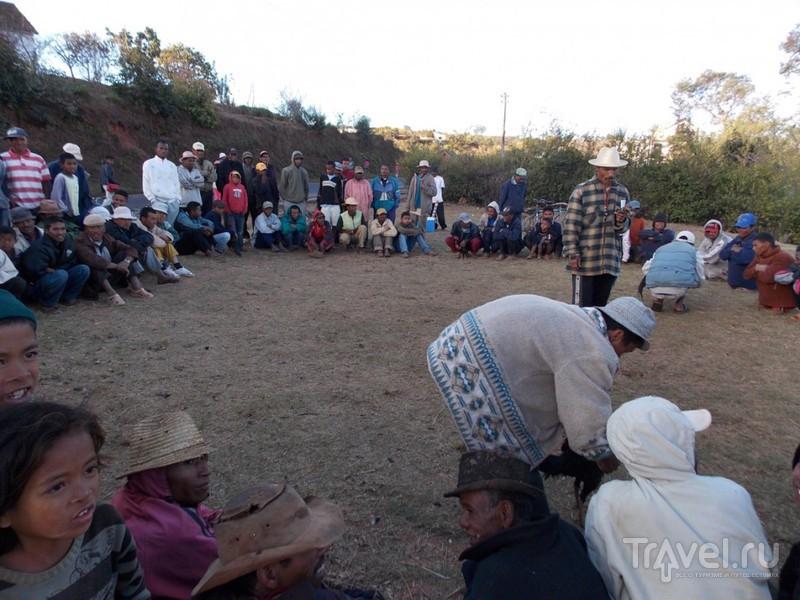 Мадагаскар. Петушиные бои и не только / Мадагаскар