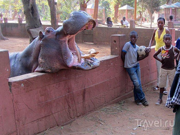 Мапуту Зоопарк / Мозамбик