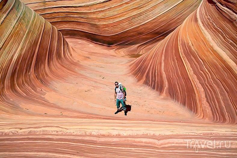 The Wave Canyon, UT / США