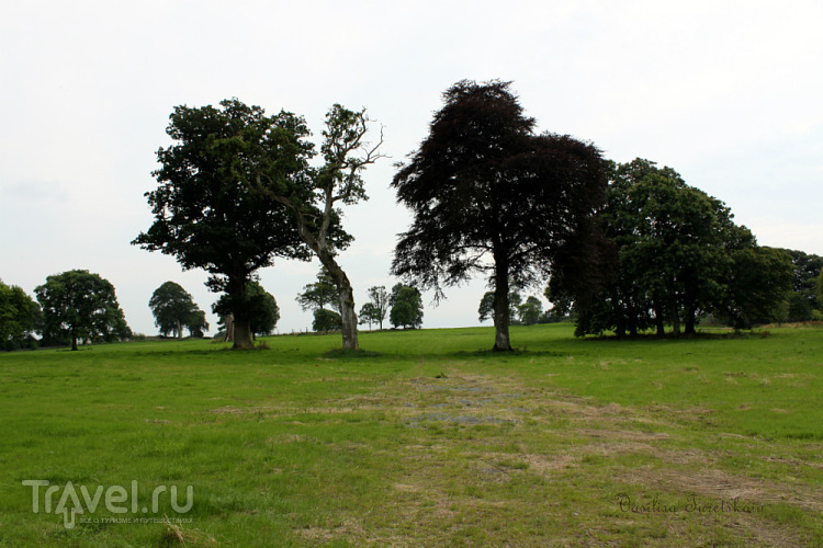 Парк замка Бирр / Ирландия