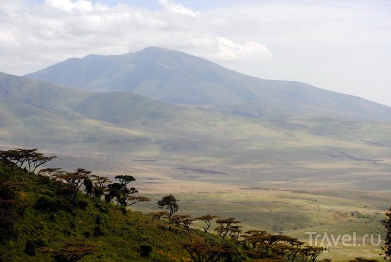 Танзания: заказник и кратер Нгоронгоро / Фото из Танзании