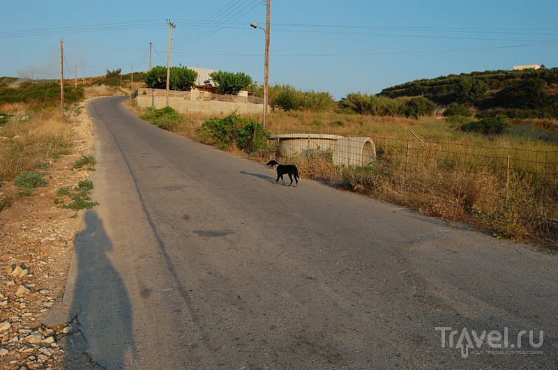 В деревню, к тетке, в глушь, в Скалету! / Греция