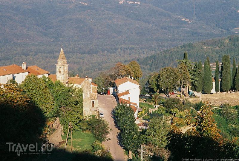 Путевые заметки: Мотовун, Хорватия / Хорватия