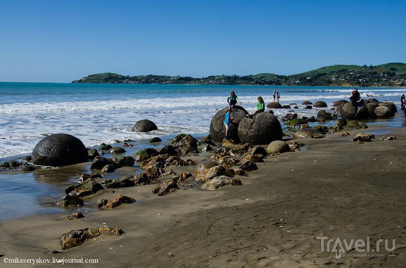 Новая Зеландия, Тимару - Оамару - Моераки / Фото из Новой Зеландии