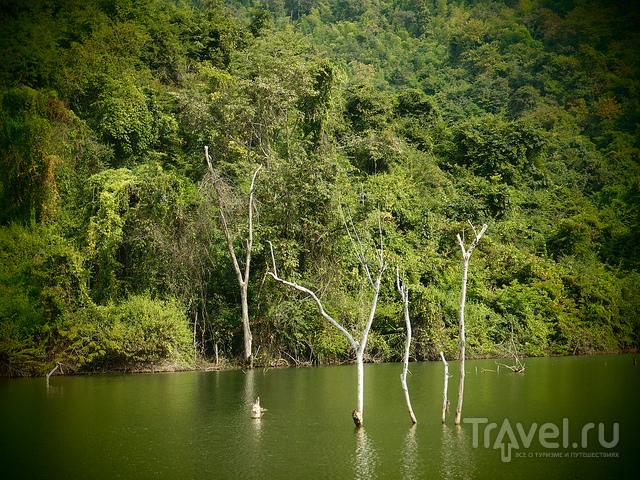 Окрестности Чианг-кхана, часть 1 / Таиланд