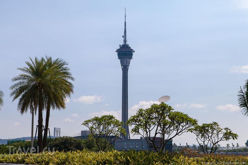 Башня Макао (Macau Tower) / Фото из Макао