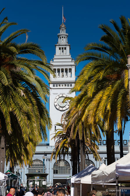 США: Сан-Франциско - город полный риска / США