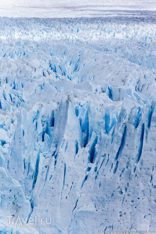 Ледник Перито-Морено / Фото из Аргентины