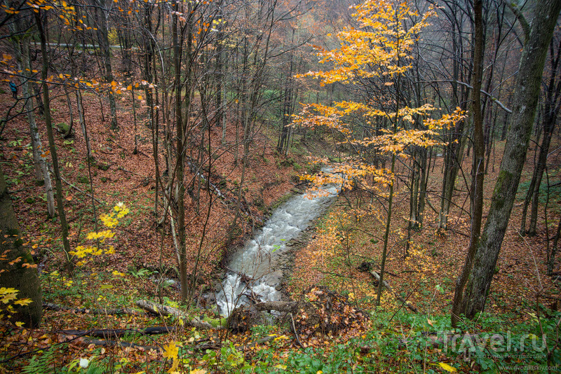 Карпаты в ноябре, или у природы нет плохой погоды / Фото с Украины