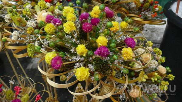 """""""Казюкас"""" или где купить цветы любимой на ближайшие 15 лет / Литва"""