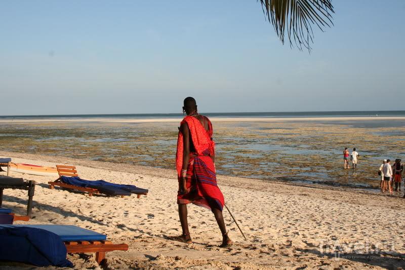 Кения - океан и сафари / Кения