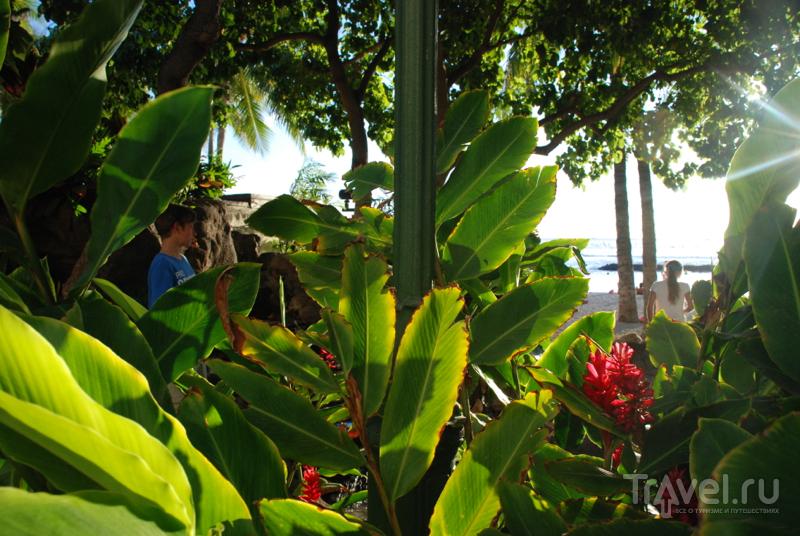 Архипелаг Гавайи и его самый главный пляж / США