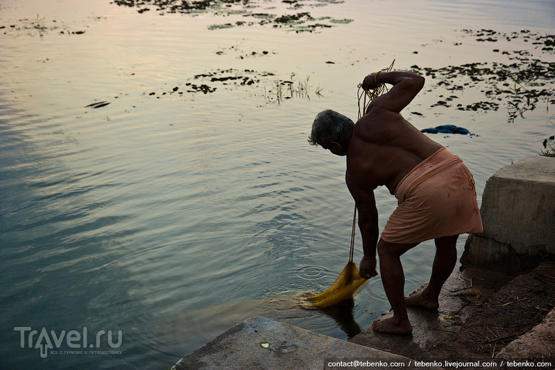 Индия. Керала. Часть 5. Школьный день, рисовые поля и другое / Индия